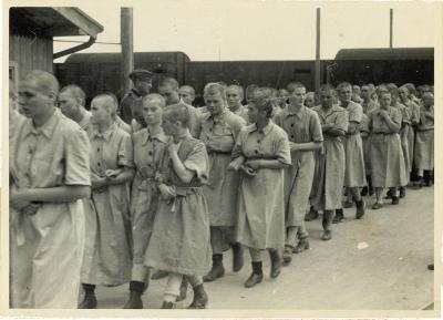 Guerre 39 45 : les camps de concentration affiche